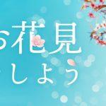 """屋内で見る桜もまた一興!?""""室内花見""""を楽しもう!"""