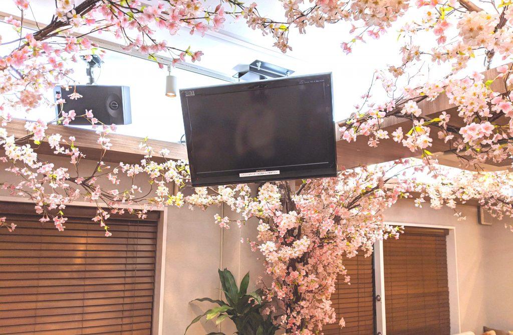 室内に咲いた桜